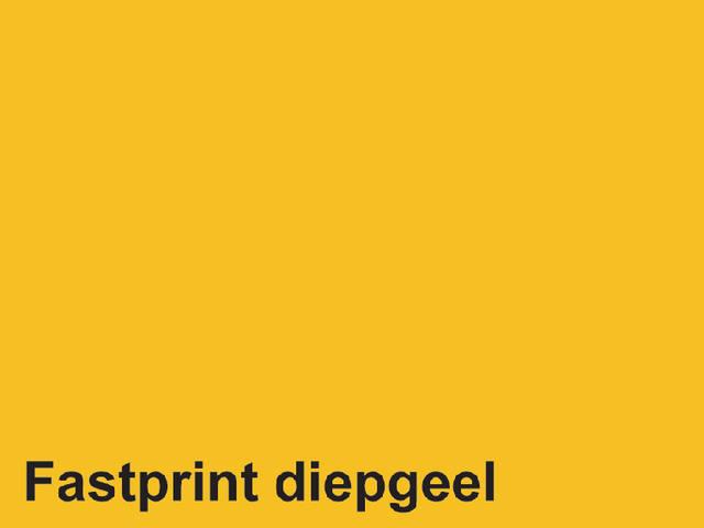 KOPIEERPAPIER FASTPRINT-100 A4 120GR DIEPGEEL 2