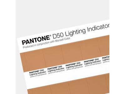 PANTONE LIGHTING INDICATOR STICKERS D50 2